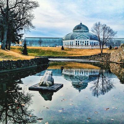 Como Conservatory, St. Paul, MN, iPhone Photo Art