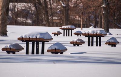 Winter in Como Park, St. Paul, MN